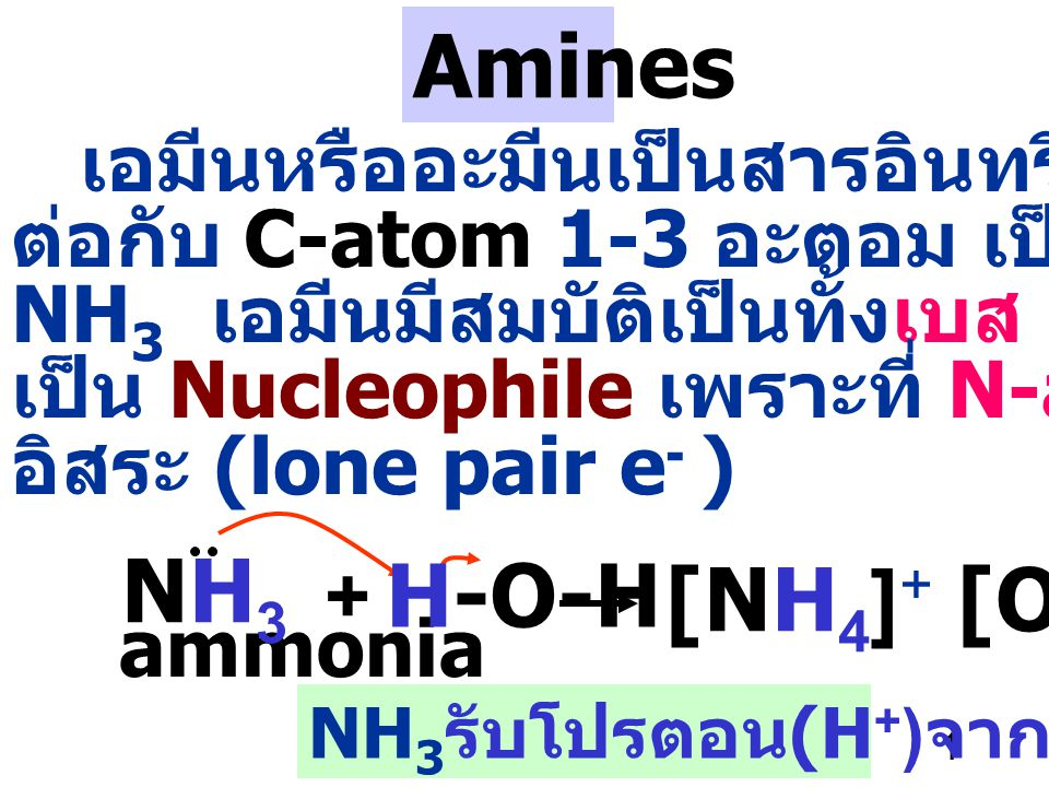 Amines NH3 H-O-H [NH4]+ [OH]- เอมีนหรืออะมีนเป็นสารอินทรีย์ที่ N-atom